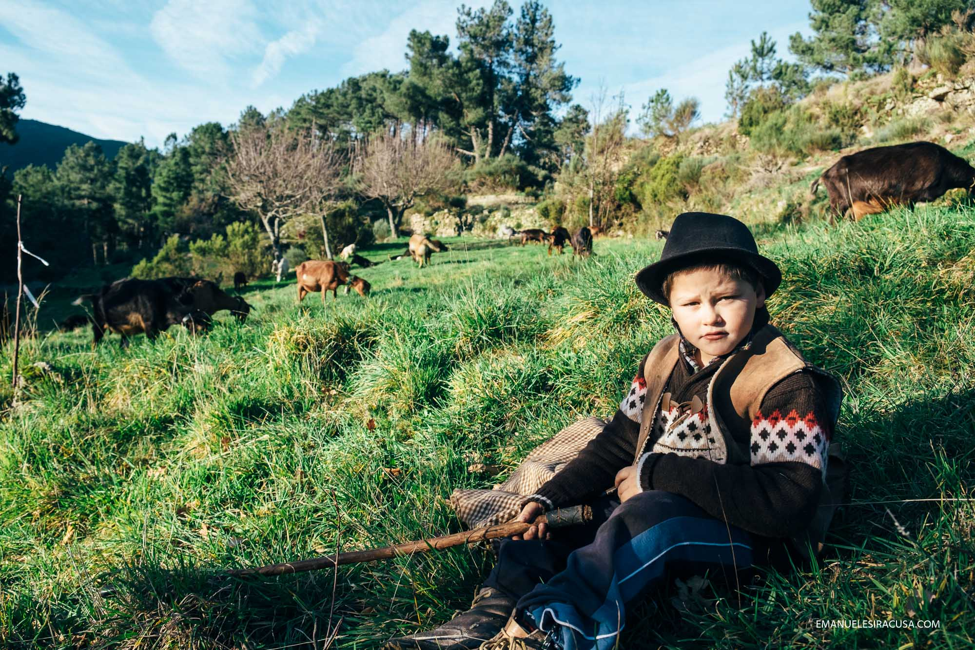 Dinis is only 9 years old but he knows he wants to be a herder. He lives with his mum, his two uncles and his beloved goats. He goes to school during the week, but at weekends he wakes up early, milk the goats and take them out with his uncle Miguel.